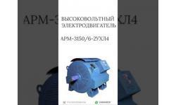 ВЫСОКОВОЛЬТНЫЙ ЭЛЕКТРОДВИГАТЕЛЬ АРМ-3150/6-2УХЛ4