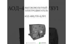 ВЫСОКОВОЛЬТНЫЙ ЭЛЕКТРОДВИГАТЕЛЬ АОД-400/170-6/8У1