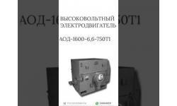 ВЫСОКОВОЛЬТНЫЙ ЭЛЕКТРОДВИГАТЕЛЬ АОД-1600-6,6-750Т1