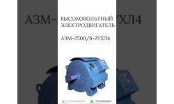 ВЫСОКОВОЛЬТНЫЙ ЭЛЕКТРОДВИГАТЕЛЬ АЗМ-2500/6-2УХЛ4
