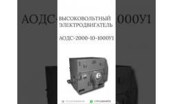 ВЫСОКОВОЛЬТНЫЙ ЭЛЕКТРОДВИГАТЕЛЬ АОДС-2000-10-1000У1