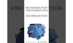 ВЫСОКОВОЛЬТНЫЙ ЭЛЕКТРОДВИГАТЕЛЬ АЗМ-5000/10-2УХЛ4