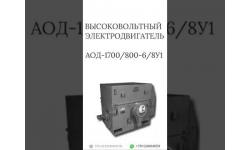 ВЫСОКОВОЛЬТНЫЙ ЭЛЕКТРОДВИГАТЕЛЬ АОД-1700/800-6/8У1