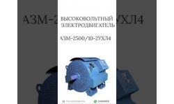 ВЫСОКОВОЛЬТНЫЙ ЭЛЕКТРОДВИГАТЕЛЬ АЗМ-2500/10-2УХЛ4