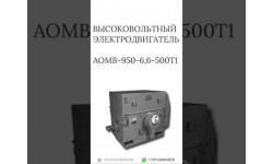 ВЫСОКОВОЛЬТНЫЙ ЭЛЕКТРОДВИГАТЕЛЬ АОМВ-950-6,6-500Т1