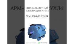 ВЫСОКОВОЛЬТНЫЙ ЭЛЕКТРОДВИГАТЕЛЬ АРМ-5000/10-2УХЛ4