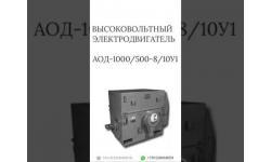 ВЫСОКОВОЛЬТНЫЙ ЭЛЕКТРОДВИГАТЕЛЬ АОД-1000/500-8/10У1